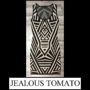 Jealous Tomato Bodycon Dress